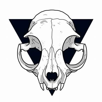 Skull Cat Drawing Clipartmag