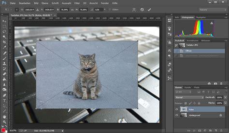 photoshop bild einfuegen  gehts