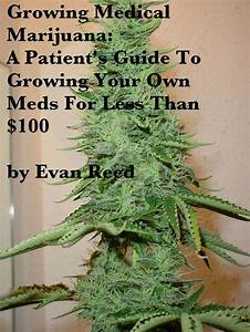 24 Best Images About  U0026quot 420 U0026quot  Grow Guides On Pinterest