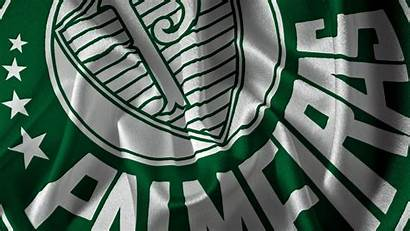 Palmeiras Papel Bandeira Parede Deviantart Wallpapers Bandeiras