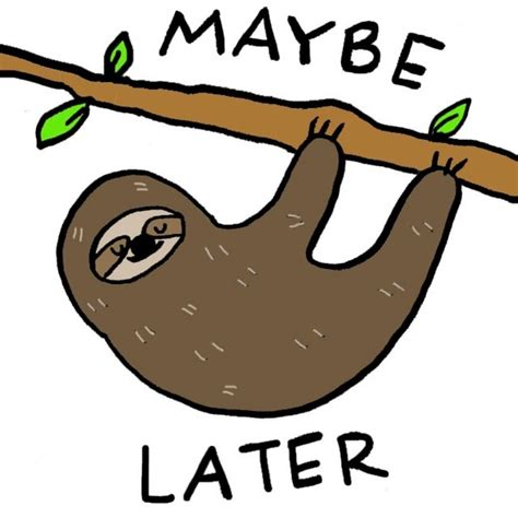 Three Toed Sloth Clipart At Getdrawings Free Download