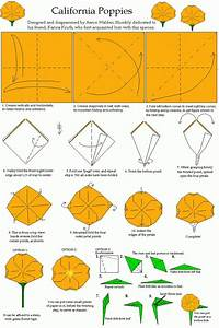 14 Best Images About Origami On Pinterest
