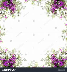 Frame Of Wild Flowers On A White Background Stock Photo ...
