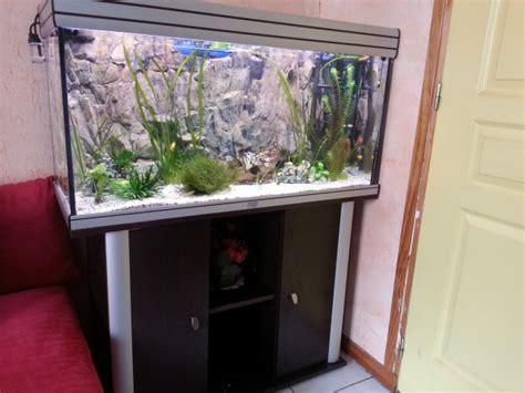 comment cuisiner un poireau promo aquarium de 28 images promo aquarium ripleys