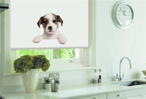 cute animal print blinds   measure  english blinds
