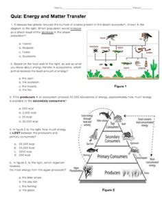 six levels of ecology ecology review worksheet 1 answers recipes to cook pinterest