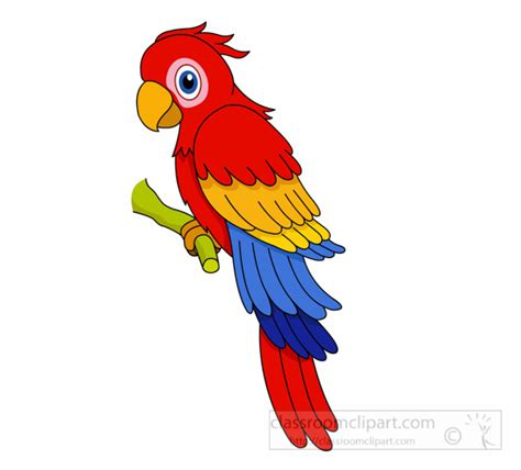 Parrot Clip Parakeet Clipart Macaw Pencil And In Color Parakeet