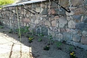 Abri A Tomate : potager biologique 2009 christiane et michel ~ Premium-room.com Idées de Décoration