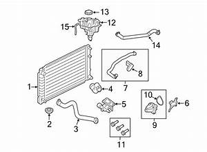 Ford Escape Engine Coolant Thermostat Kit  Liter  Housing