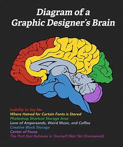 Diagram Of A Graphic Designer U0026 39 S Brain  U2013 Church Sermon Series Ideas