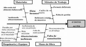 Diagrama De Ishikawa Causa Efecto Para El Problema Del