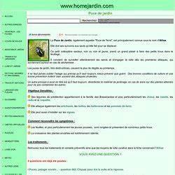 Puce De Jardin : puce de jardin pearltrees ~ Nature-et-papiers.com Idées de Décoration