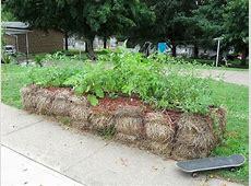 Straw Bale Gardening Instructions ‒ The Ultimate Beginner