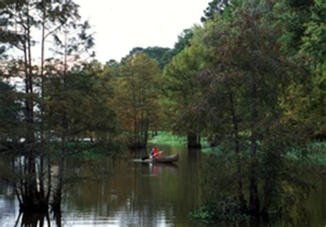 Boat Paddling Houston by Tpwd Bevilport Paddling Trail Paddling Trails