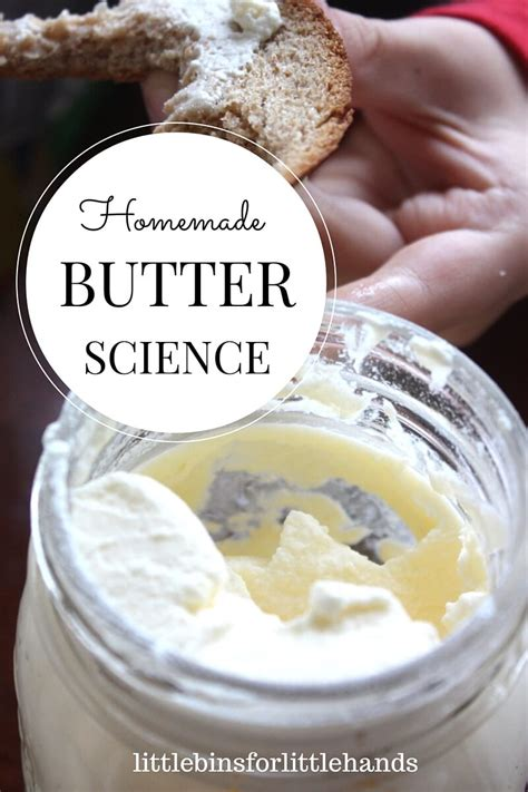 homemade butter science activity  butter   jar