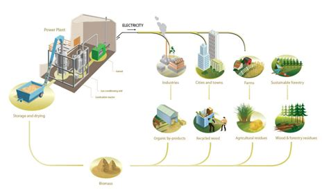 How is Sugar Cane Used to Generate Electricity? (Bagasse ...