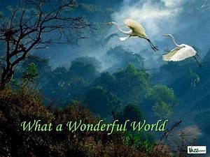 Que mundo maravilloso