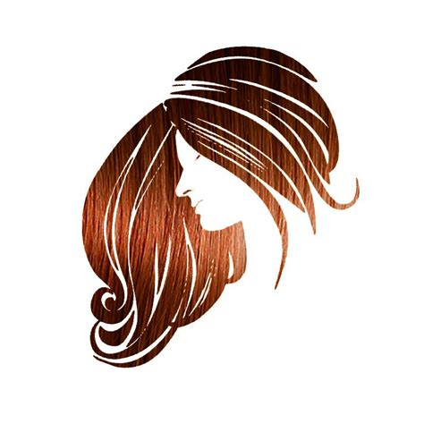 Henna Maiden Copper 100 Natural And Chemical Free Hair Coloring