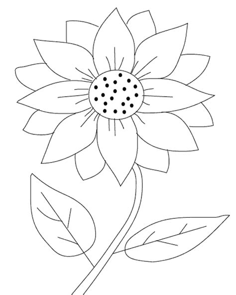 sunflower coloring pages printable kids pinterest