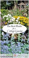 A List of Cottage Garden Plants; The Ultimate Guide cottage garden plant list