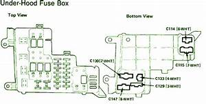 1989 Honda Accord Lx Fuse Box Diagram