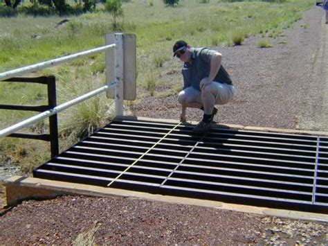 2000-11-21 Cattle Grid Photos