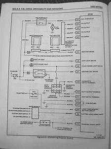 Peugeot 206 Wiring Diagram Owners Manual Brilliant