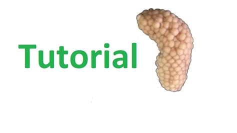 How To Get Mystery Snail Eggs To Hatch  Youtube. Crip Signs. Eyes Signs. Prohibited Signs. Bath House Signs. Latin Phrase Signs. Glyphs Signs. Cycle Road Signs. Fragile Signs