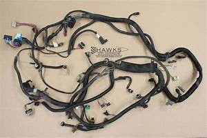 89 Firebird Tbi  Tpi 305  350 Engine Wiring Harness Used Oem