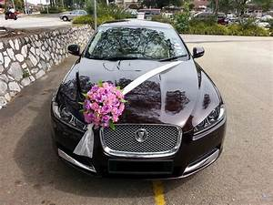 Wedding vehicle decorations 25 best ideas about wedding car 17 best ideas about wedding car decorations on pinterest wedding cars car decorating and junglespirit Gallery