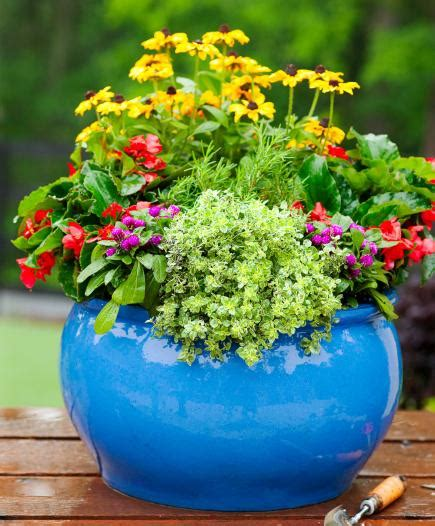 How To Plant A Cottage Garden In A Pot  Midwest Living