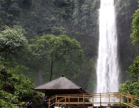 curug cimahi natural beauty waterfall  cimahi bandung