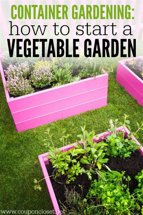 how to start a garden container gardening how to start a vegetable garden