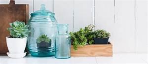 Grünpflanzen Im Topf : der trend im topf gr ne zimmerpflanzen beautypunk ~ Michelbontemps.com Haus und Dekorationen