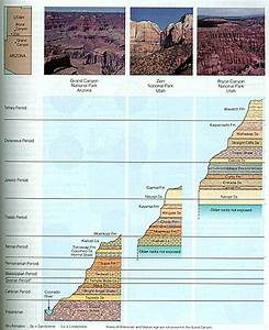 The Stratigraphic Column  U2014 Not A Figment Of Geologists
