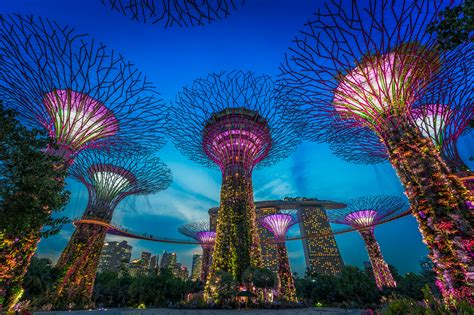 singapore gardens by the bay singapore gardens by the bay