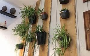 Plante Suspendue Intérieur : comment faire un mur de plantes d int rieur ~ Teatrodelosmanantiales.com Idées de Décoration