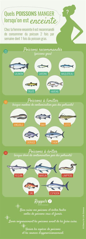 cuisiner l anguille alimentation pendant la grossesse désagréments