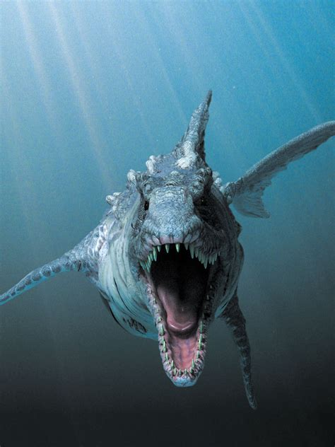 Dinoshark | Monster Moviepedia | Fandom powered by Wikia