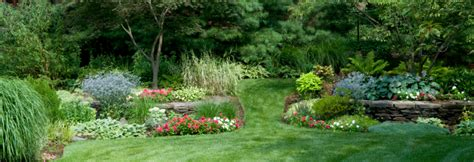 professional landscaping cost professional lawn care prices what to expect