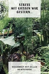Blumen Bewässerung Im Urlaub : stress mit gie en war gestern nachhaltig leben pinterest ~ Orissabook.com Haus und Dekorationen