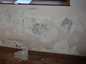 Anti Humidité Mur : peinture pour mur humide peinture pour mur humide ~ Edinachiropracticcenter.com Idées de Décoration
