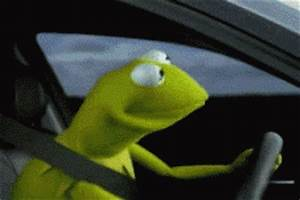 Kermit GIFs - Find & Share on GIPHY