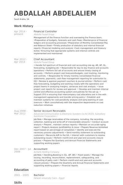Senior marketing resume