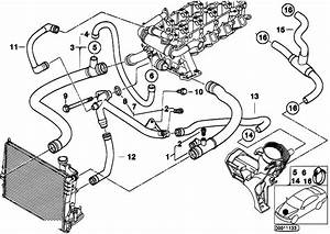 Original Parts For E46 320d M47 Touring    Engine   Cooling System Water Hoses