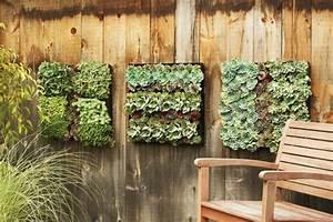 Mur Végétal En Palette : 1001 id es pour un mur v g talis mur v g tal int rieur ~ Melissatoandfro.com Idées de Décoration