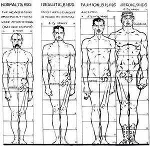 Variations In Proportion