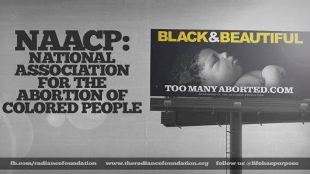 naacp national association   abortion  colored