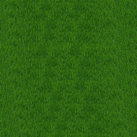รูปภาพฟรี: หญ้าเนื้อ เขียว