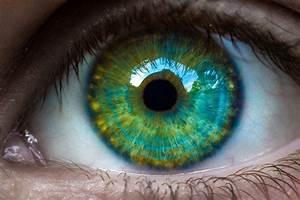 Les Yeux Les Plus Rare : amazing eye photographs incredible snaps ~ Nature-et-papiers.com Idées de Décoration